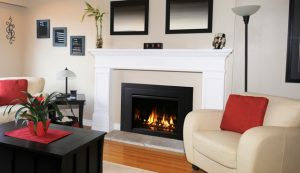 cressy-door-fireplace-blog-gas-fireplace-insert-ask-cressy-madison-park-3234-cd-01